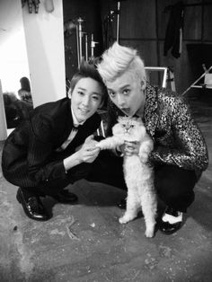 A kitty and my two wittle men, way too adorable for words. ♥ Saranghae Kevin oppa and Eli oppa!!!!! ♥♥♥