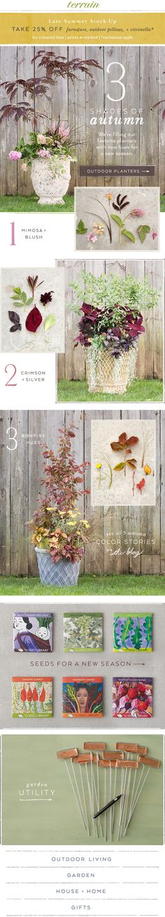 Look ahead to #autumn with favorite #planters + saturated foliage at #shopterrain August 7