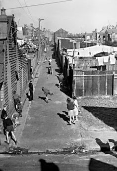 Pictures From The Past Children playing Cricket, in an ally off Vine St, Redfern in Source: Fairfax Archives (Norman Brown) Sydney Australia, Australia Travel, Old Pictures, Old Photos, Sydney City, The Sydney Morning Herald, As Time Goes By, Largest Countries, Slums