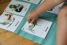 Matching animals to pictures #toddler activities