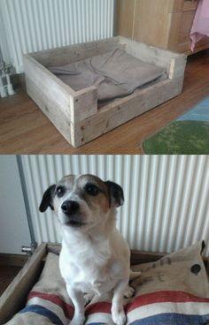 Mijn projecten - Hondenmand gemaakt van een en oud pallet, kussen custom made van een oude postzak