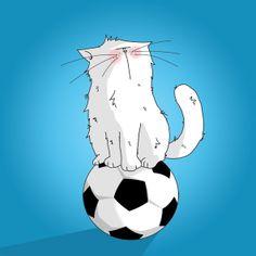 chat sur un ballon de football / cat on a soccer balloon