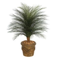 Artificial outdoor palm trees are a perfect accent for the front entrance of your home or business. Add a tropical touch to your landscape with our 4 foot Outdoor Areca palm tree.