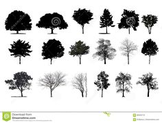 Illustration about Image of trees in section. Illustration of ecology, nature, branch - 69455710 Tree Images, Bonsai, Dandelion, Photoshop, Trees, Stock Photos, Urban Planning, Texture, Urban Design
