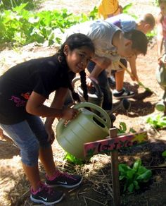 "Kids Gardening org: Their Garden Registry is a ""listing of garden programs across the United States and world. From botanical gardens to the local library garden, this directory allows programs to connect with volunteers, donors, and one another, and helps you to apply for our many grant programs. Search the registry for a program near you!"" FREE but sign up required."