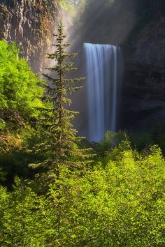 Tamanawas Falls, Mt. Hood National Forest, Oregon, USA