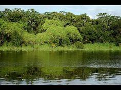 CCB  Hinos cantados com Paisagens de Rios e florestas vídeo 2