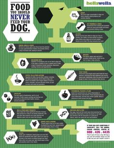 Foods Never To Feed Your Dog - some of these I did not know about, like avocados and macadamia nuts (not that our dog eats these).  Good info to know!