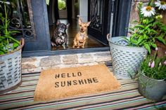 Bring a smile to your guests face with these adorable door mats. With five different greetings, these minimalist mats make a immense statement in a delicate and dainty way. Say hello to your guests wi