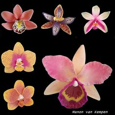 Polymer Clay Orchids tutorials ebook by ManonvanKempen on Etsy