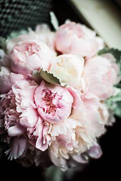 We love this closeup of the bouquet! The colors are mezmerizing // Photo by Bill Waldorf #wedding #weddingbouquets #weddingflowers #pinkweddingideas #castletonfarms