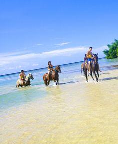 horseback ride in Jamaica