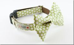 i'm so sewing one of these for Devo for his first day of puppy school