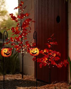 Give your outdoor spaces a haunting yet enchanting glow with this lighted maple tree. Autumn Painting, Fall Paintings, Led Tree, Balsam Hill, Autumn Display, Apartment Balcony Decorating, Harvest Season, Maple Tree, Halloween Decorations