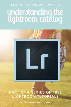 Part 2 of the Learn Lightroom Series on Live Snap Love - Learn all about the Lightroom Catalog and how to manage your image files | Lightroom Tutorial