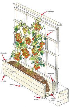 En odlingslåda med spaljé är ett fint alternativ till altanräcke. Bygg själv – och fyll med dina favoritväxter! Det är inte svårt.