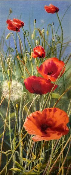 Elizabeth Tyler, exposición 2013 - Campos de la amapola
