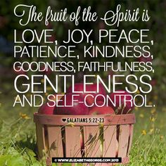 """This scripture from Galatians 5:22-23 is what the book """"A Girls Guide to Making Really Good Choices"""" by Elizabeth George is all about."""