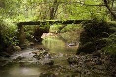 Ruta de la Ribera del Río de la Peña (Nava)