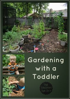 *** MUST remember to get my toddler helping out in the garden. These are great ideas. The Educators' Spin On It: Gardening with a Toddler and Natural Playscape.