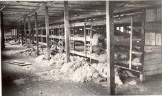 Dvinsk, Latvia, Postwar, The interior of a barrack in the concentration camp.