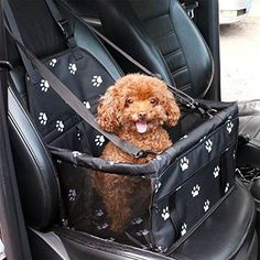 Petbobi Pet Reinforce Car Booster Seat for Dog Cat Portable and Breathable Bag with Seat Belt Dog Carrier Safety Stable for Travel with Clip on Leash and Storage Package Pet Puppy, Pet Dogs, Doggies, Pet Carrier Bag, Puppy Carrier, Cute Car Accessories, Travel Accessories, Dog Car Seats, Puppy Car Seat
