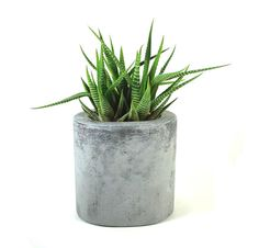 Oval Concrete Pot / Vase by roughfusion on Etsy, $25.00