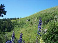 Naučná stezka Velká kotlina Mountains, Nature, Travel, Naturaleza, Viajes, Destinations, Traveling, Trips, Nature Illustration