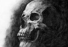 Anatomical Skull Illustration by Eeva Meltio Skull Illustration, Skull And Bones, My Works, Skulls, Anatomy, Creepy, Dark, Big, Artwork