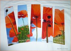 Lot de 5 marque-pages de Céline Photos Art Nature Coquelicots : Marque-pages par celinephotosartnature