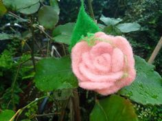 Small Rose, Small Flowers, Flower Hair Clips, Flowers In Hair, Birthday Pins, Needle Felting, Babe, Pink, Valentines