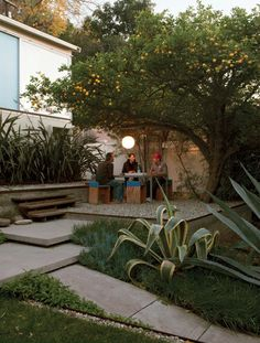 Outdoor space with two of my favorite things:  A citrus tree and an agave. Via dwell magazine via cup of jo.