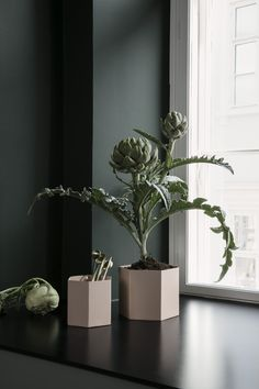 Ferm Living wows me again with their new AW 2017 collection. Lots of greens and soft pink shades. And one of my Ferm Living favourites, the Plant Box now comes with a Brass Tray. Vase Vert, European Home Decor, Blog Deco, Ceramic Design, Rose Design, Design Color, Pink, Home Collections, Decoration