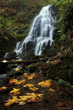 Fairy Falls - Oregon