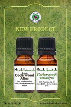 New Product! Our True Cedarwood Essential Oil Set contains the finest quality Atlas Cedarwood and Himalayan Cedarwood essential oils. These two Cedarwood varieties are known as the truest Cedars. Since they share the same plant family, Himalayan and Atlas