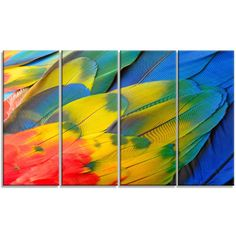 DesignArt 'Scarlet Macaw Feathers' 4 Piece Graphic Art on Wrapped Canvas Set