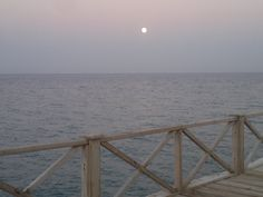 new moon |red sea | Egypt