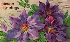 Beautiful Antique Purple Floral Greetings by VintagenutsInc, $4.50