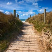 Path to the beach. by Helen Dixon Phone Backgrounds, Cornwall, Countryside, Landscape Photography, Paths, Dan, Coast, Country Roads, Island