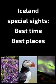 Iceland special things to see - Best time best places
