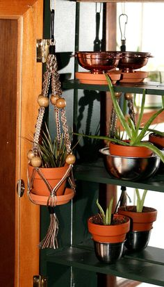 Bambolive Natural Organic Bamboo Color Transitioning Handmade Macrame Plant Hanger- Hanging Basket