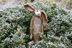 Goats, Gardening, Animals, Icing Techniques, Garden Art, Bunny, Easter Activities, Ideas, Animales