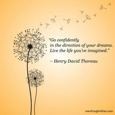<b>Dandelion</b> <b>Quotes</b> My story of seeds and