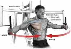 Chest Workouts via  Tavi Castro