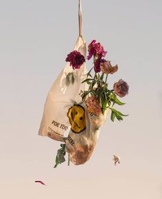 Through his camera lens, London and New York-based visual artist Arch McLeish frames the world as he sees it: beautiful, strange and broken. Still Life Photography, Art Photography, Photography Illustration, Flower Power, Beauty Dish, Pics Art, Grafik Design, Wall Collage, Aesthetic Pictures