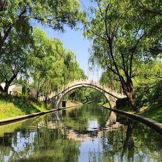 Beijing Bamboo Forest