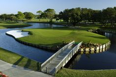Golf course at Palm Aire Country Club, Sarasota, FL Florida Golf Courses, Public Golf Courses, Best Golf Courses, Sarasota Real Estate, St Andrews Golf, Coeur D Alene Resort, Augusta Golf, Golf Course Reviews, Coeur D'alene