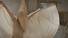 """New discovery! """"Scale It Back"""" by DJ Shadow feat. Little Dragon. Cool video, too!"""
