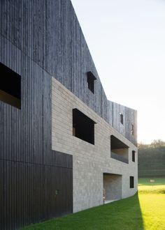 Gallery of Rooftops Twin House H / bergmeisterwolf architekten - 10