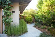 Landscape Architect Visit: A Japanese-Inspired Oasis in Sonoma, by ROCHE+ROCHE - Gardenista Lush, Zen, Wood Trellis, Fire Pit Patio, Public Garden, Garden Paths, Water Features, Landscape Architecture, Garden Inspiration